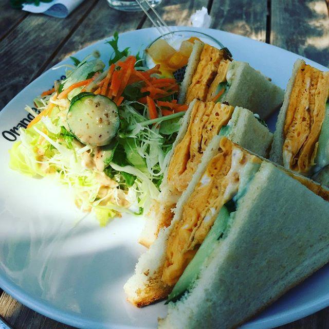チワワも一緒ならオレンジペコで決まりよね、21世紀公園のカフェ