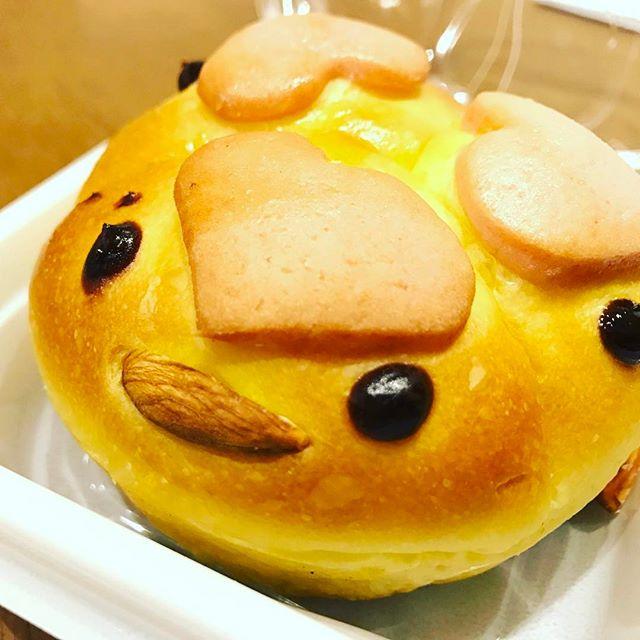 ピボット内のパン屋さんポンパドウルで酉年限定パン。 #ポンパドウル #ピボット #郡山駅 #パン #酉年 #ひよこ #2017 #限定 #子ども向け #おこさま #お菓子 #おやつ #ハート #キャラ #かわいい #ヒヨコ #チョコ #アーモンド #つぶらな瞳